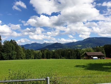 Foto, das eine große Wiese und die Berge im Hintergrund zeigt
