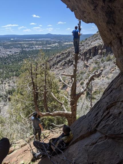 Drei junge Männer am steilen Hang eines Berges, einer ist auf die Spitze eine verdorrten Baumes geklettert