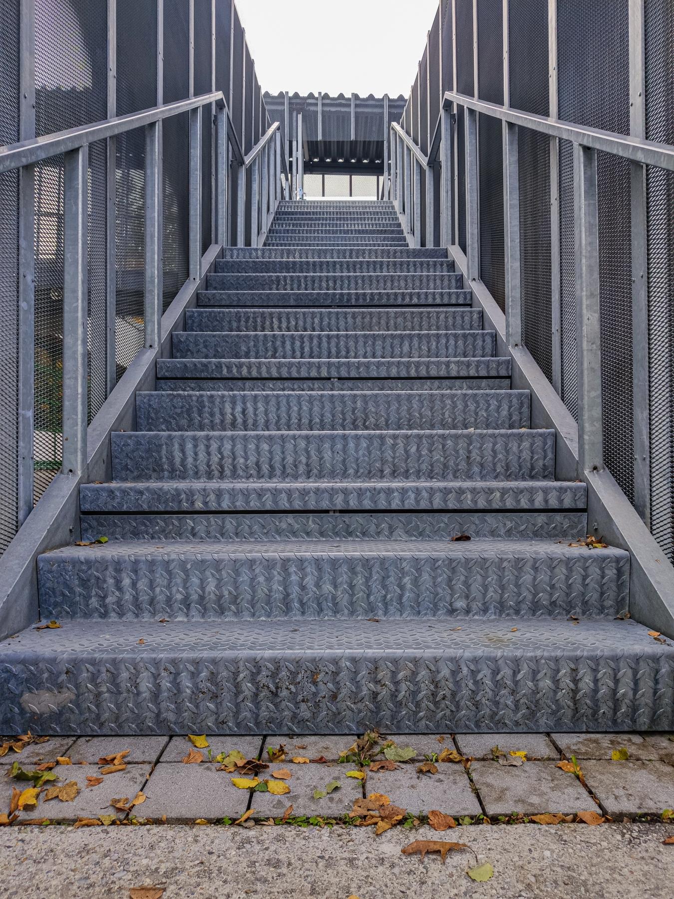 Bild einer Treppe aus Metall, vor der etwas Laub liegt