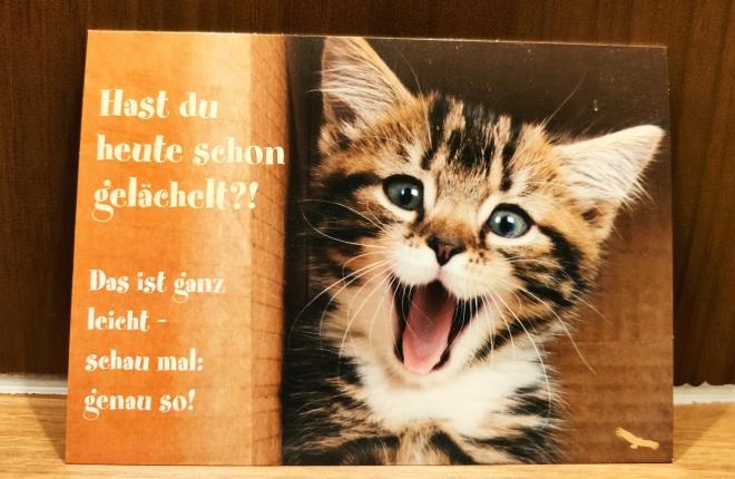 Foto, das eine Postkarte mit einer kleinen Katze zeigt, die den Mund offen hat; plus den Text: